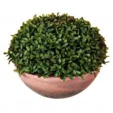 Planta artificial con maceta Foswood Haus