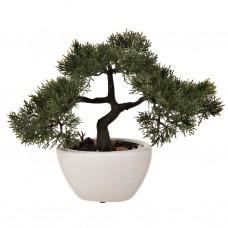 Planta artificial con maceta ovalada Bonsai Haus