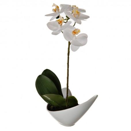 Arreglo Orquídea Blanca con maceta Haus