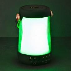 Parlante portátil Bluetooth / Resistente al agua / Luz LED IBT10B iHome