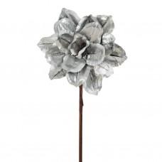 Flor Rosa Jacaranda Plateado Belinda Flowers