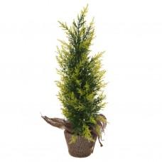 Árbol pequeño con base de yute Verde
