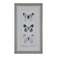 Cuadro con marco Habano Wash Mariposas
