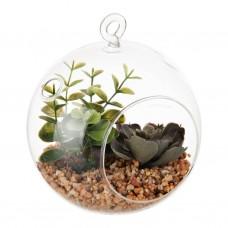 Terrario colgante con planta pequeña