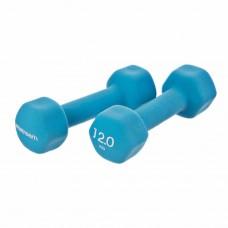 Juego de 2 pesas mancuernas Proteus Sports