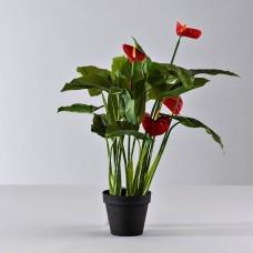 Planta artificial con maceta Flor Anturio Rojo Haus