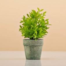 Mini planta artificial Verde con maceta redonda Haus