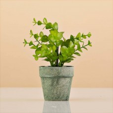 Mini planta artificial con maceta redonda Haus