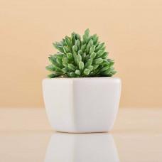 Mini planta artificial Verde con maceta blanca Haus