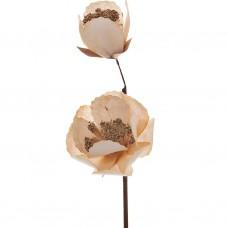 Flor Magnolia Belinda Flowers