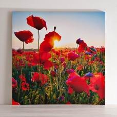 Cuadro Primavera Flores Rojas