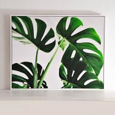 Cuadro con marco Hojas Verde