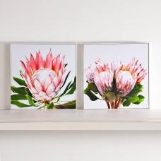 Juego de 2 cuadros con marcos Flores