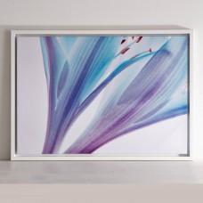 Cuadro con marco Flor Azul