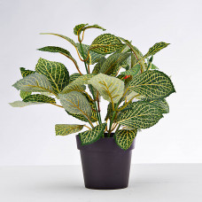Planta artificial Hoja Verde / Beige con maceta Haus