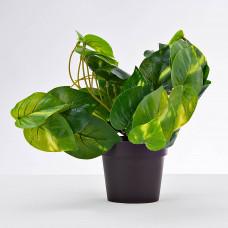 Planta artificial Hoja Verde con maceta Haus