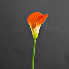Flor artificial Cala Lily Haus