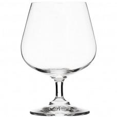 Juego de 6 copas para cognac Carpe Diem Nadir Marinex