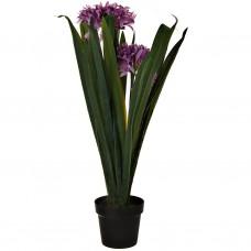 Planta artificial con maceta Flor Narciso Morado plástico / hierro Haus