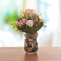 Plantas para jardín